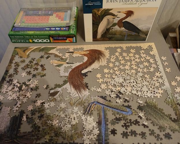 Reddish Egrets, Audubon, Puzzles, Jigsaw Puzzles
