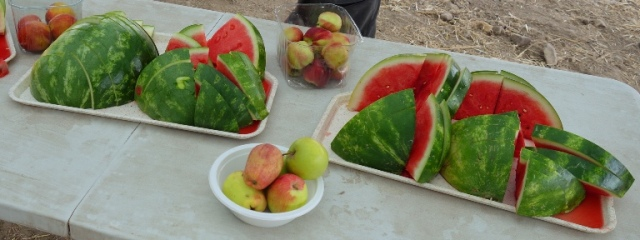 Watermelon break, archaeology, watermelon day