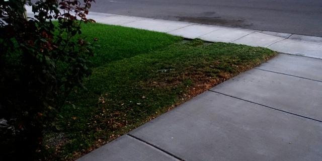Sidewalk sweeping, yard work, late evening yard work