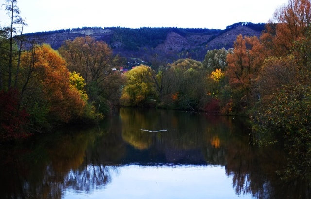Saale River, Fall, Germany, Jena, Germany, Colorful trees