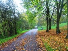 Jena, Germany, Fall Color, Goschwitz, trail
