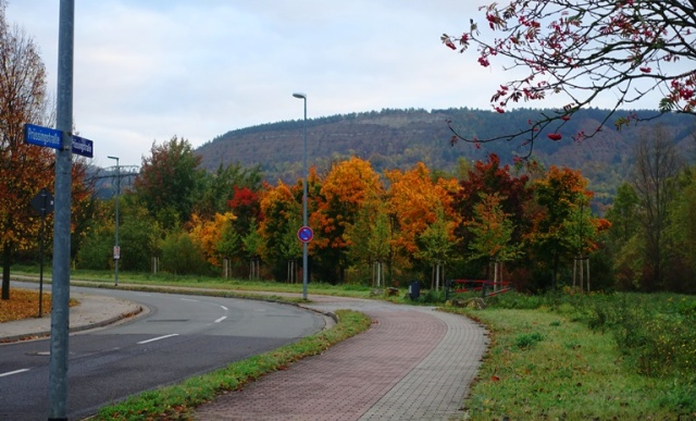 Autumn Color, Fall Color, colorful trees, Jena, Germany