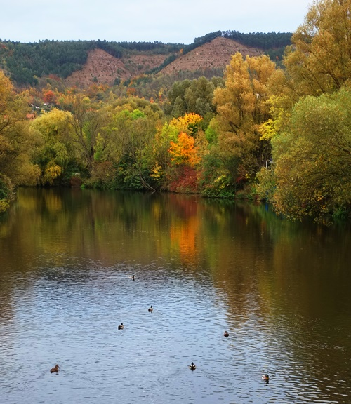 Saale River, Jena, Germany, Fall Color