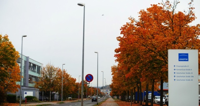 Red leaves, Trees, Germany, Fall, Autumn
