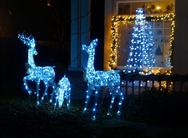 Ghost Deer, Lawn decorations, white lights