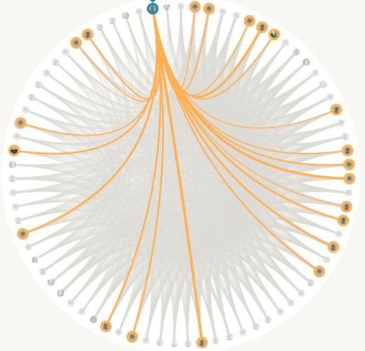 DNA Circle, Amish DNA, Amish Geneaology