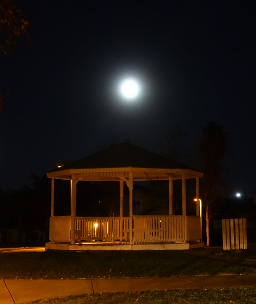 Zanuzi Park, Tracy, California, Moon, Full Moon
