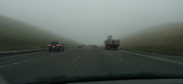 Fog on Altamont, Commute, Foggy Morning