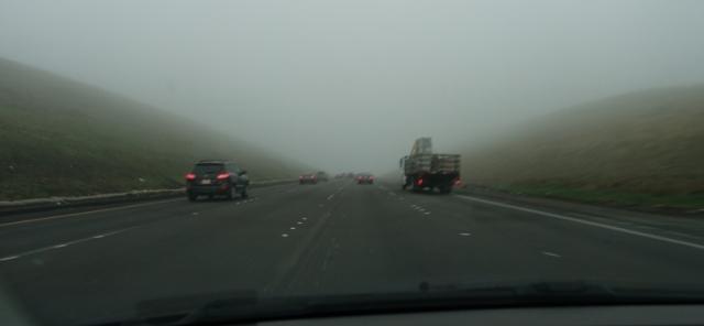 Fog on Altamont, Commute, Foggy Morning
