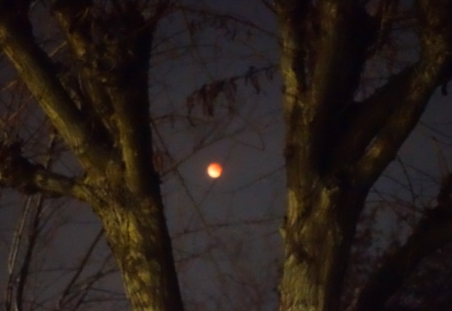 Blood Red Moon, Super Moon, Blue Moon, Eclipse