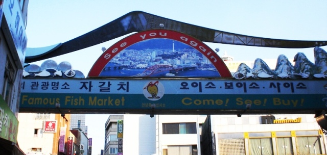 Busan, Famous Fish Market, South Korea, Olympic thoughts