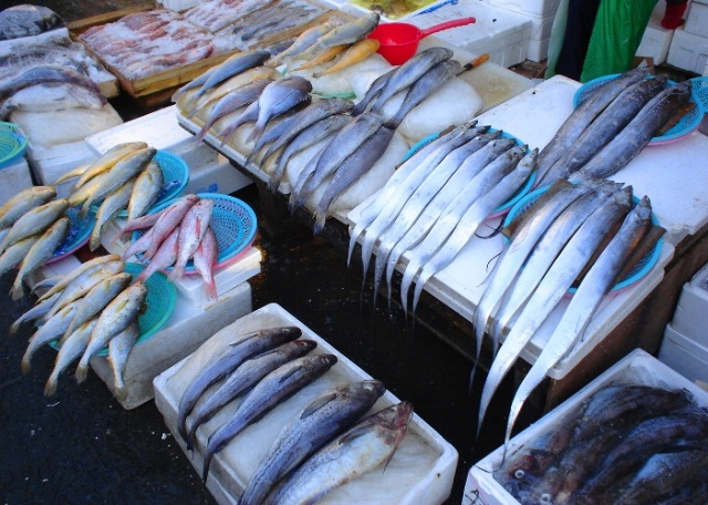 Fresh Fish, Jagalchi Fish market, Busan, Pusan, South Korea