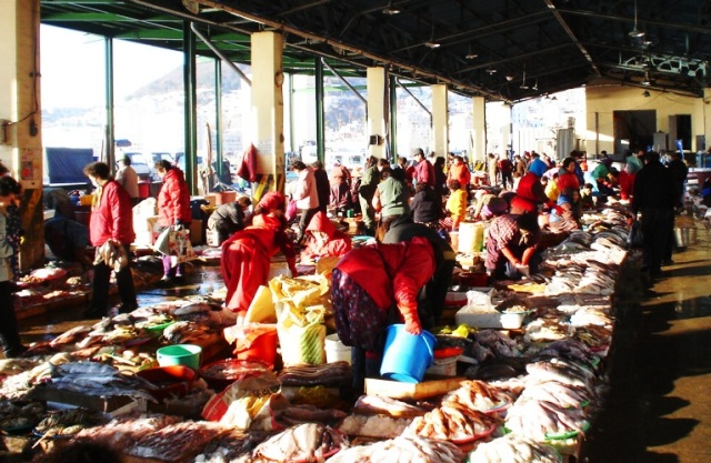 Busan, South Korea, Jagalchi, Fish Market