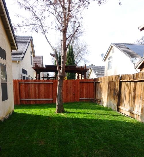 back yard, mowing, yardwork, Saturday