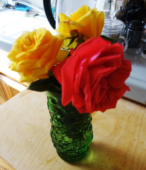 Roses in vase, red and yellow roses