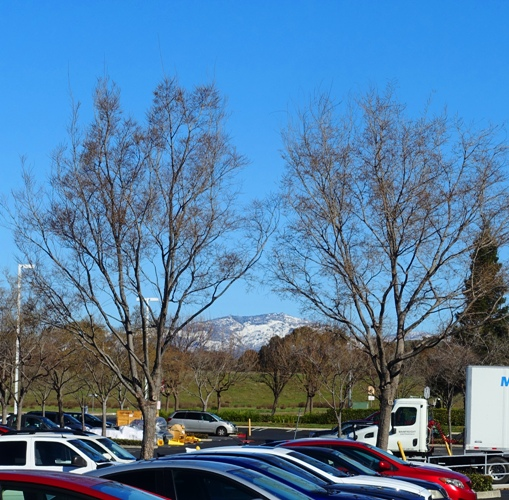 Mt. Diablo, Snow, Winter, Snow Cover, Dublin