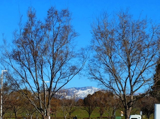 Mt. Diablo, Dublin, California, Snow