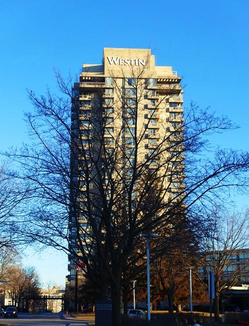 Westin Prince Hotel, Toronto, Canada, tree silhouete