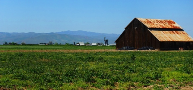 California Barns, Central Valley, California, barns