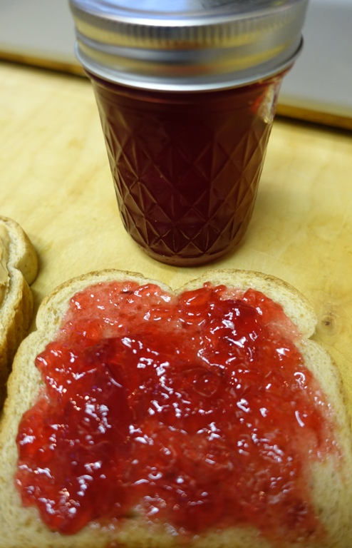 Pomegranate Jelly, PBJ, National PBJ Day