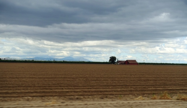 Agriculture, Central Valley, California Farms, Red Barn