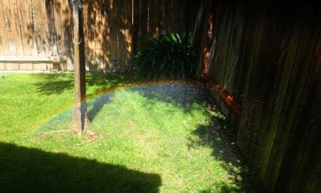 Rainbow, Sprinklers, Yard Work