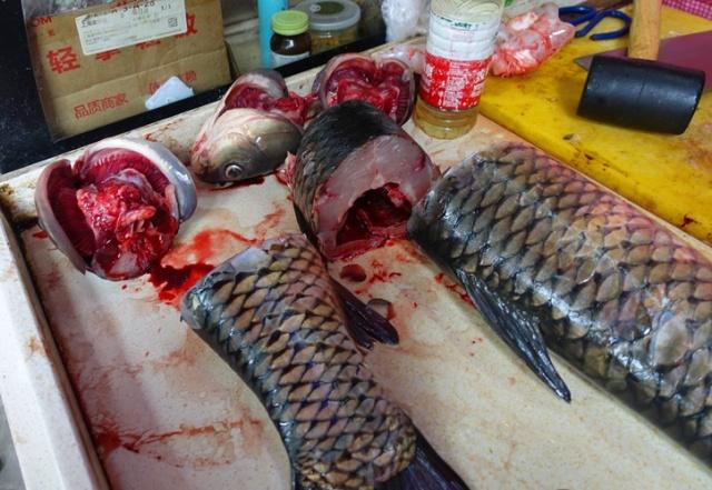 Cut Fish, fish heads, fish monger, Shanghai