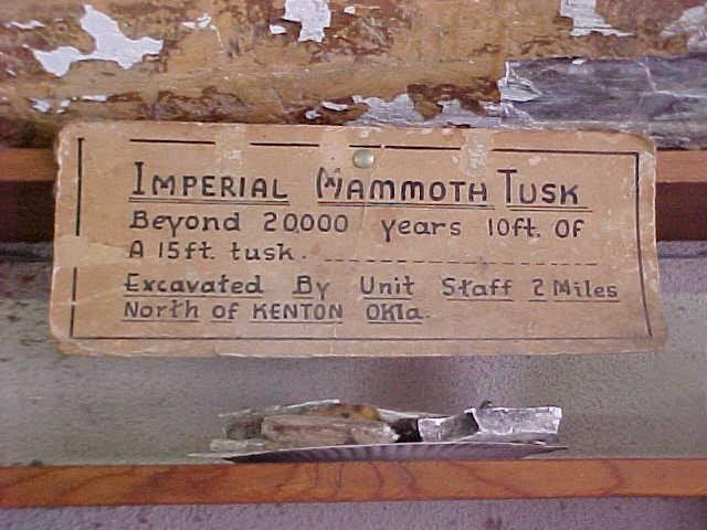 Mammoth Bones, Mammoth Tusk, Kenton, Oklahoma