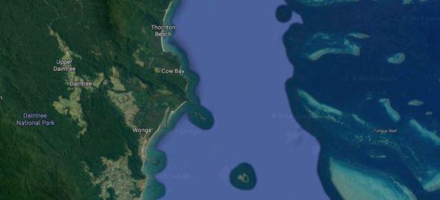Daintree Tea, Australia, Great Barrier Reef