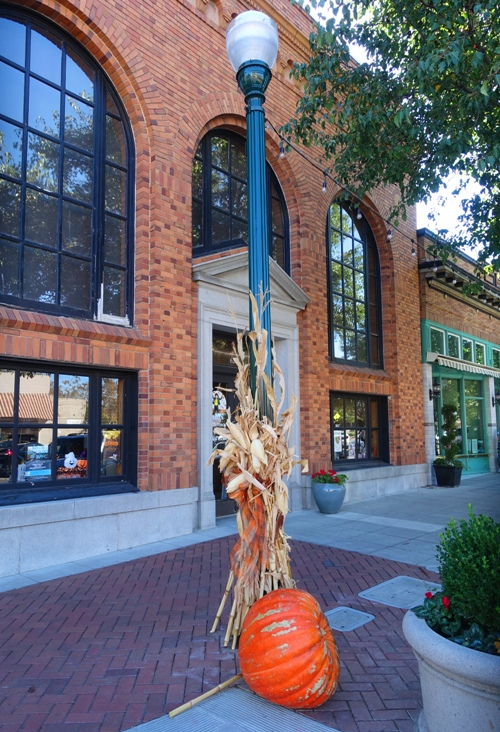 Fall Decorations, Downtown Tracy, Harvest Time