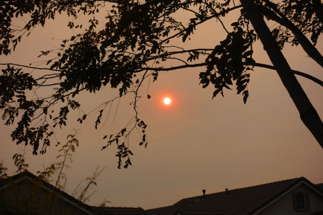 Red Sun, Sunsetting, bad air quality, sillouetes
