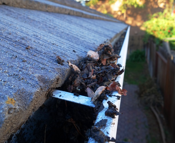 Leaves in gutter, fall house work, gutters