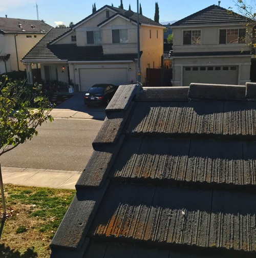 Fixed Shingle, Roof Repair, Roofing Issues