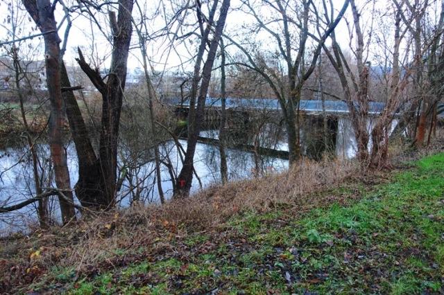 Saale River, Bridge, Jena, Germany