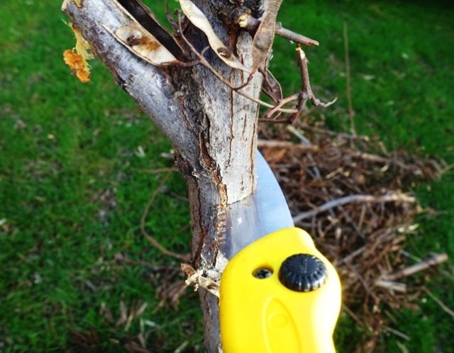 Hand saw, tree trimming, small saw, tree work, yard work