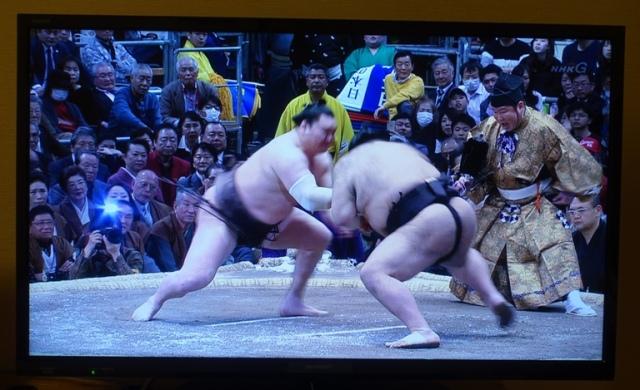 Sumo, Japan, Japanese Sport, wrestling