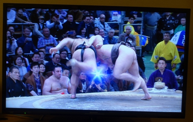 Out of the ring, Sumo, wrestling, Japanese Culture