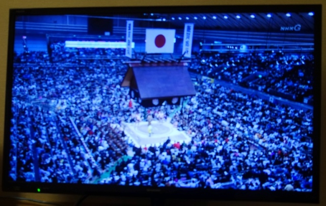 Sumo tournament, Grand Sumo, Osaka, Wrestling, Japan