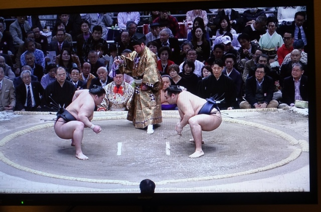 Sumo match beginning, sumo wrestling, Japan, Japanese Culture