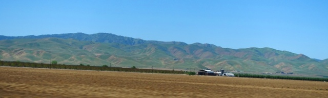 browning hills, Central Valley, California, Spring, Summer