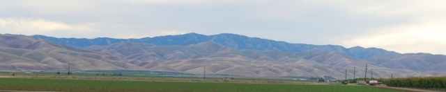 Brown hills, Central Valley California