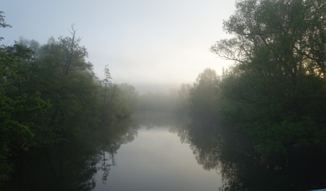 jena germany, foggy morning, river