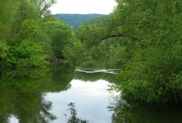 river reflections, river, jena germany