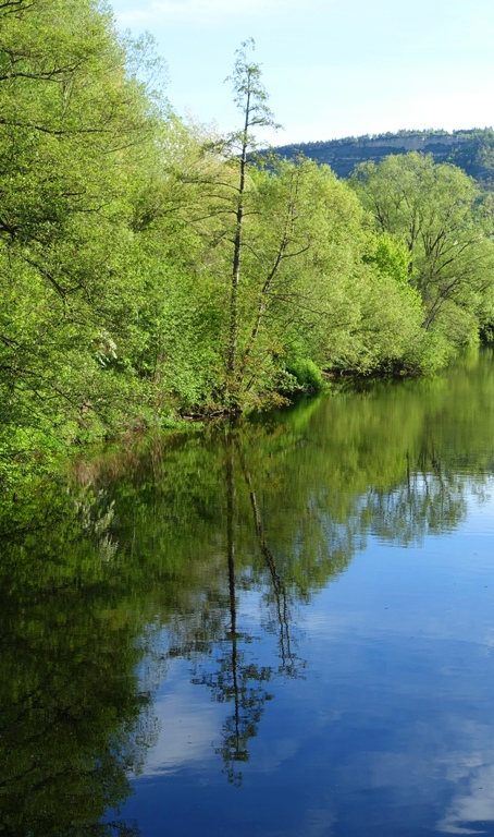 river, reflection, trees, water, german river