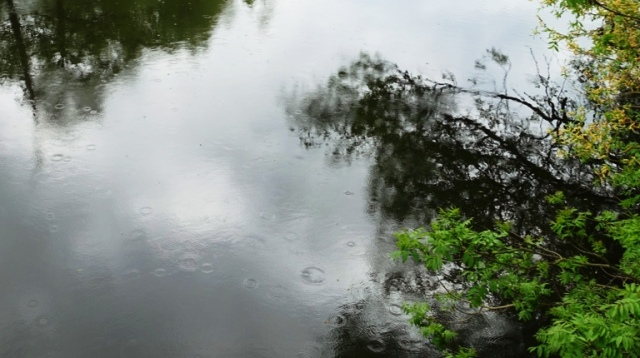 river, rain, germany, river reflections