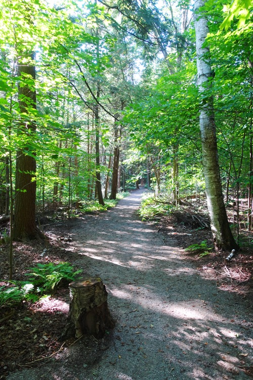 Kingbridge Centre, Trails, Hiking, walking trails, Canada, Toronto