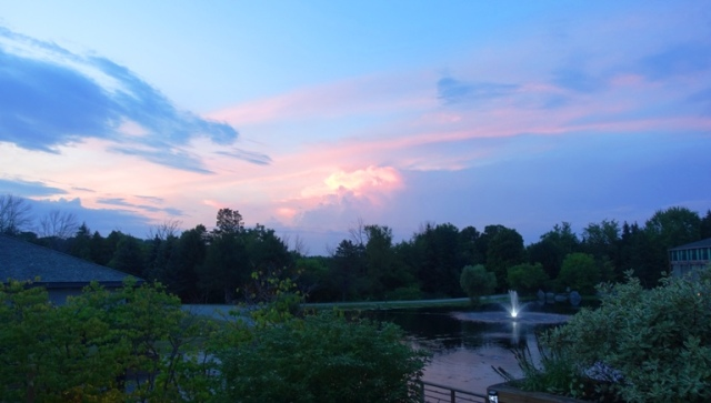 kingbridge centre, canada, trail, trees, sunset