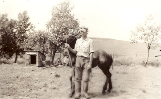 Horse, Grandpa, farm, family, Iowa