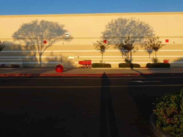 shadows, target, sunset, long shadows, trees