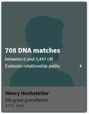 Amish DNA, ThruLines, Ancestry, DNA, Amish Genealogy